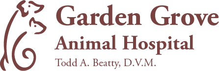 Animal Hospital Winter Haven, FL